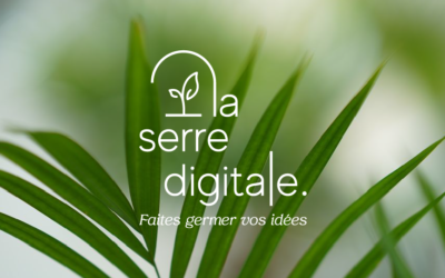 Bureau – 3 postes – La Serre Digitale